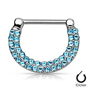 WildKlass Jewelry Double Lined CZ Set Fan Round Top 316L Surgical Steel Nose Septum/Ear Cartilage Clicker Rings