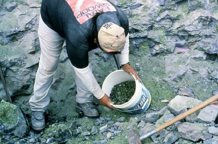 Peridot miner