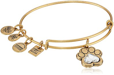 """Alex and Ani """"Charity By Design"""" Bracelet"""