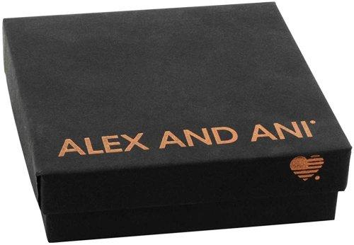 Alex and Ani Womens Raven Key Pendant Necklace Box
