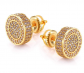 Beiiuxa Gold Earrings For Men And Ladies