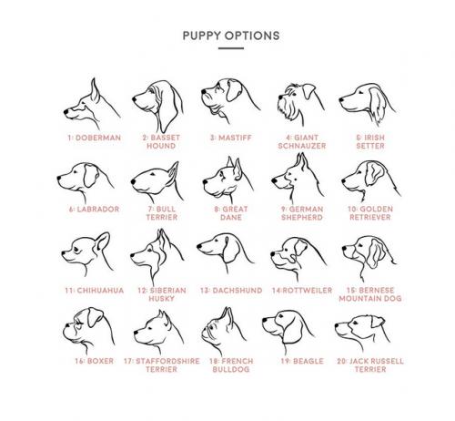 MignonandMignon Dog Portrait Personalized Dog Necklace Personalization Options