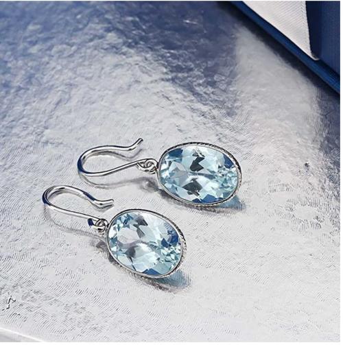 Gem Stone King Blue Topaz Earrings