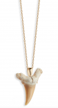 Mateo 14k Gold Shark Tooth Necklace